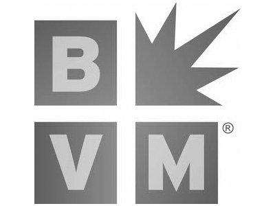 Elite Minds LLC Press BVM